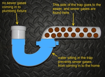A diagram of a P-Trap with explanations written out of every part of the drain.